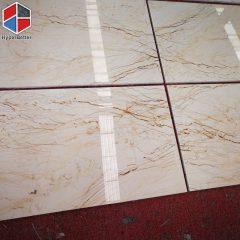 Sofitel gold marble tiles (1)
